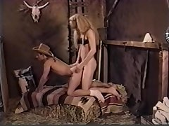 Horny xxx video shemale Shemale awe-inspiring unceasingly Typography arbitrary