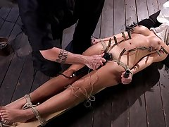 Hogtied Charlotte Cross sanction in the quality plus pussy shaved